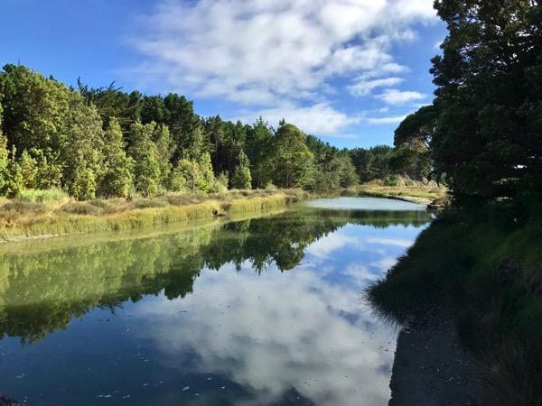 Waikawa River at the bridge.