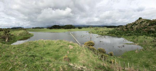 This farmland behind Uxbridge Terrace has a new lake.