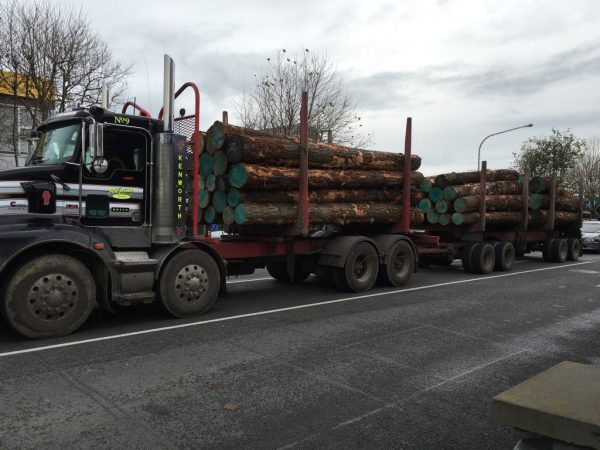 Logging truck in Levin.