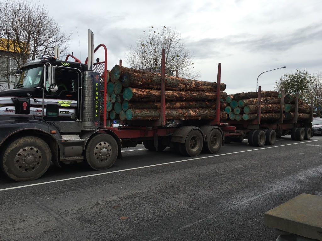 Logging truck in Levin.