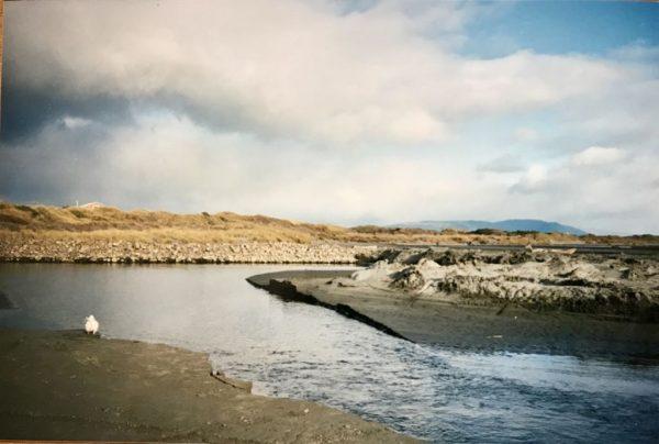 River Cut 05 June 1994.