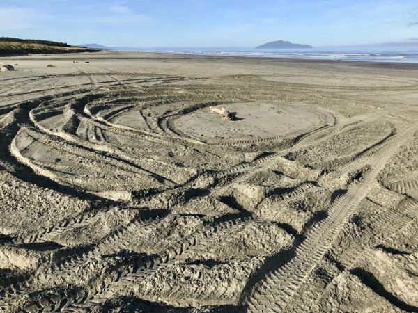 Deep ruts from donuts in the sand, observed 22 October 2018.