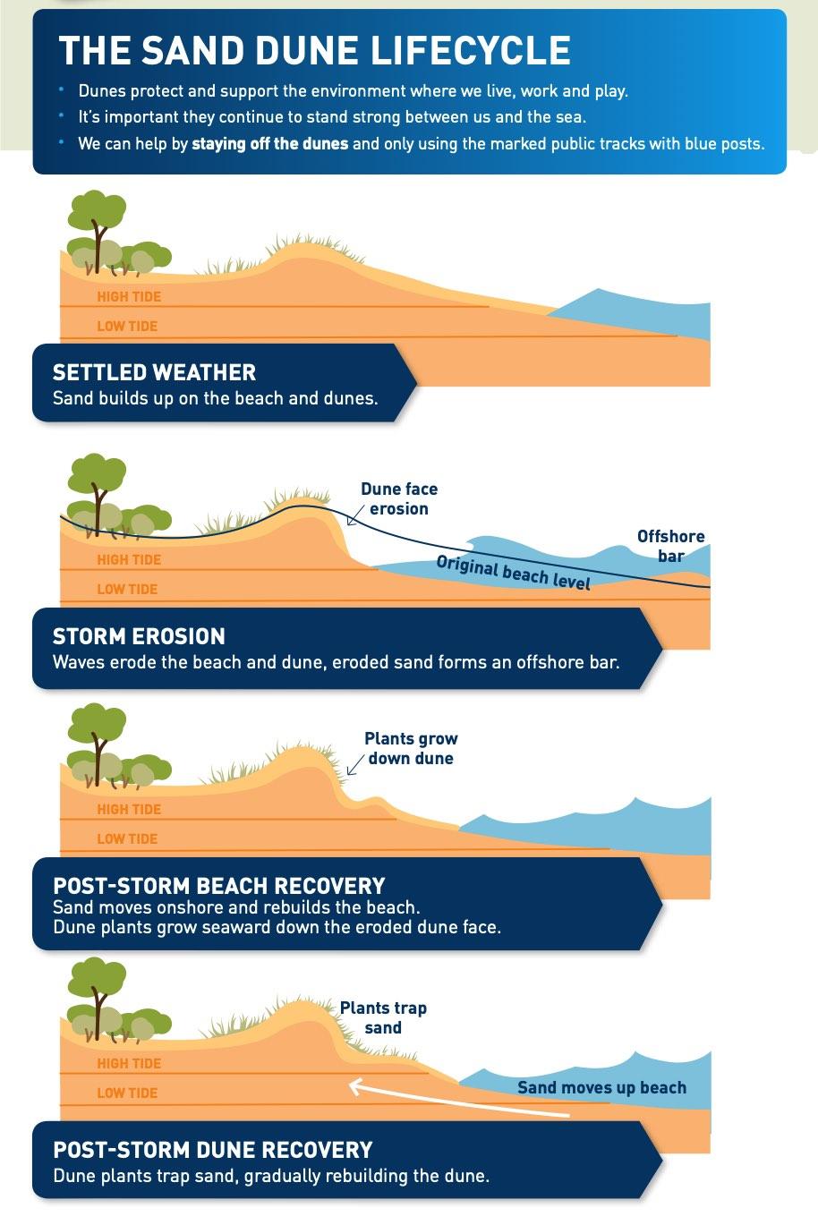 What do sand dunes do?