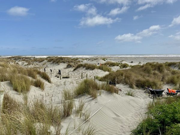 A view across dunes to where people are working.