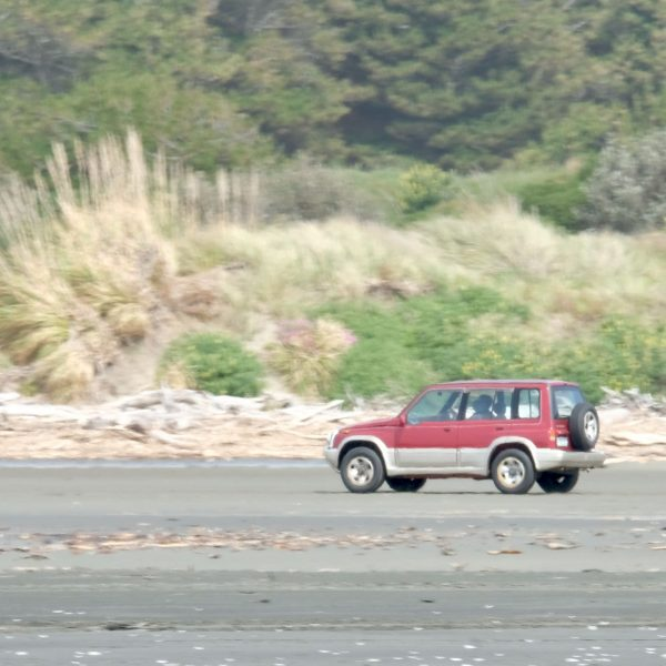 This red car leaving the beach does not have any woolsacks on the back seat.