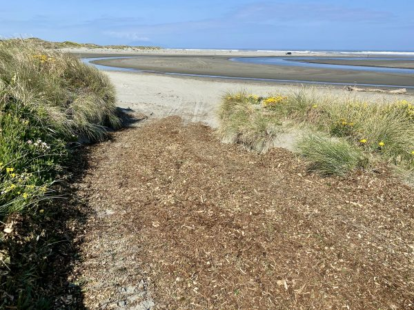 Mulch has been laid to help stabilise the sand on the track.